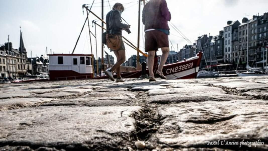 Quai du vieux port